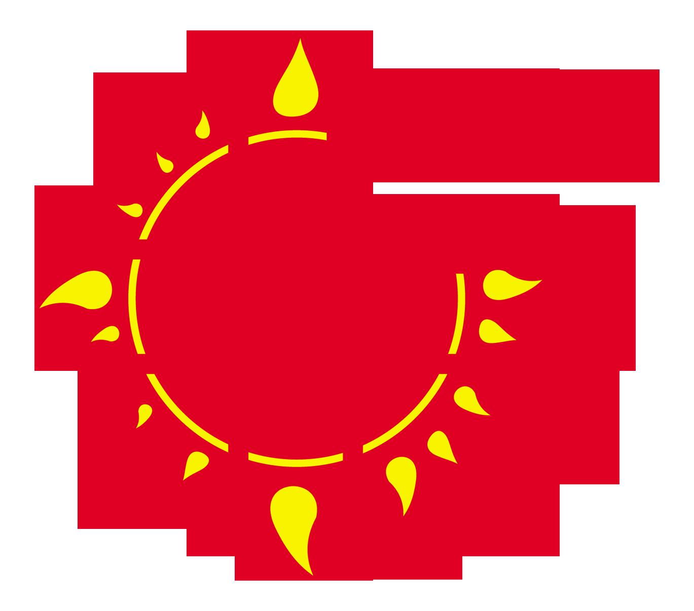 Acţiunea Catolică din România
